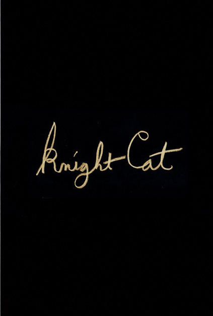 KnightCat by Cat Khan