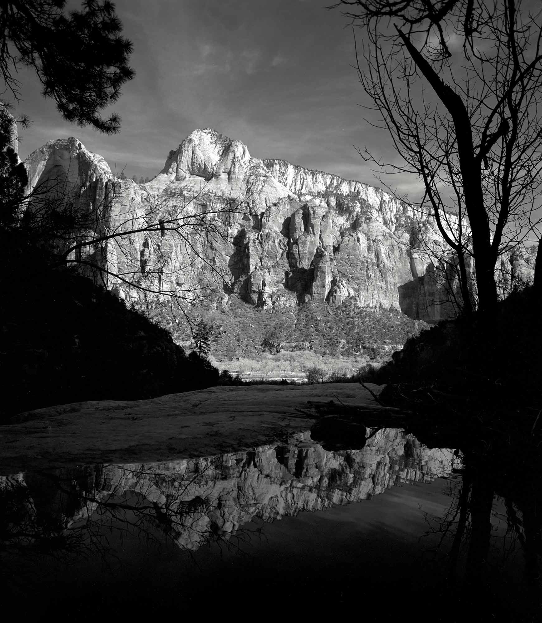black and white Photo of Zion National park FomaPan200 white mountains