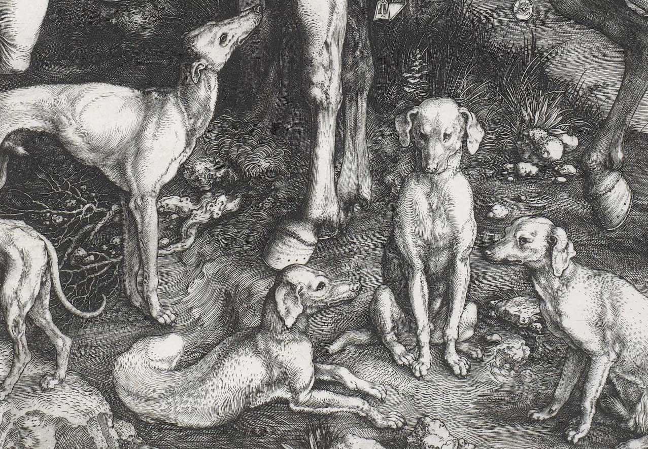 detail close up of Albrecht Durer etching of dogs